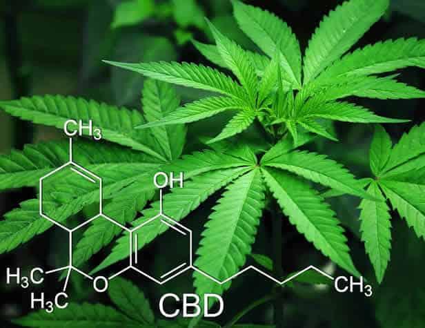 COVID-19 Drug Traffic