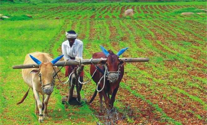 coax farmers fails
