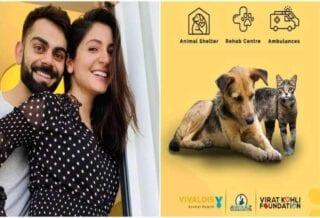 virat kohli anushka sharma animal shelter