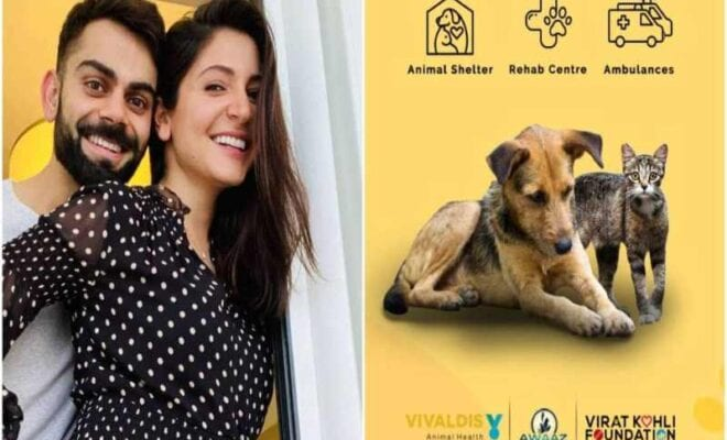 virat kohli anushka sharma animal shelter