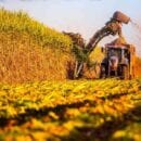 farming trade
