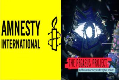 amnesty pegasus