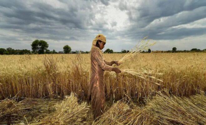 American Bigwigs Seek Access To Farmer Data Towards Privatization Drive